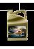 Cambio de filtro y aceite PlatinumX C2/C3 5W30